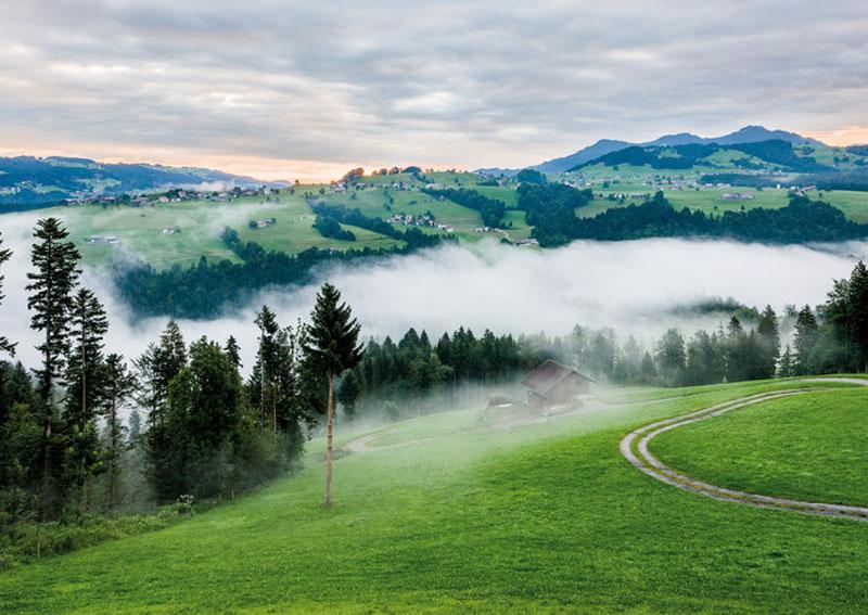 Der Bregenzerwald in Morgenstimmung im Nebel