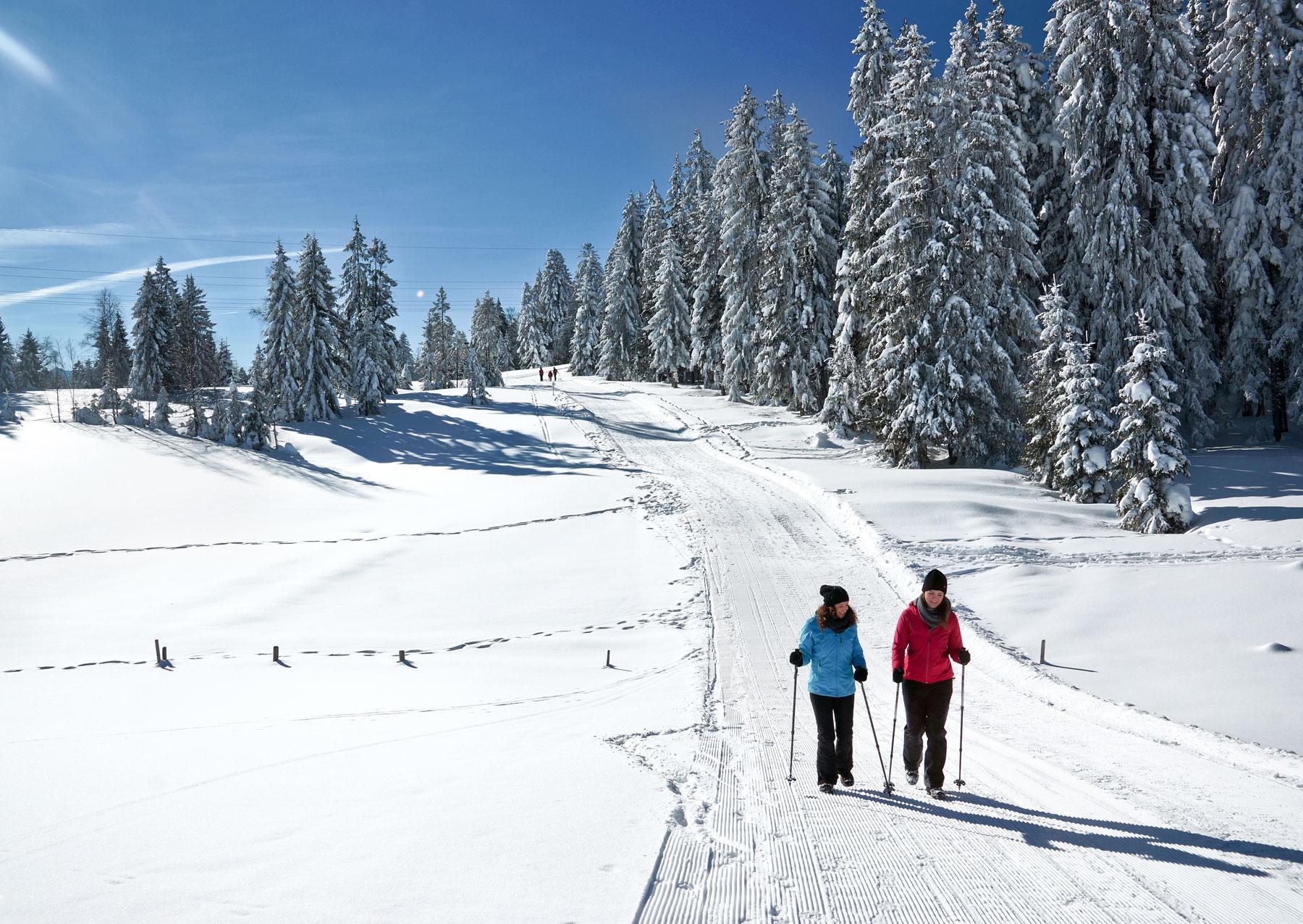 Winterwandern auf dem Brüggelekopf
