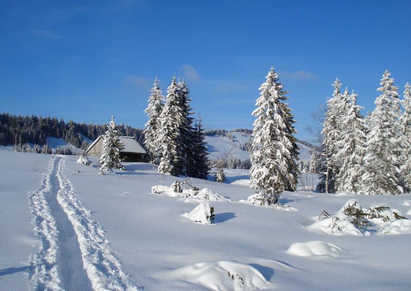 Winterlandschaft im Bregenzerwald