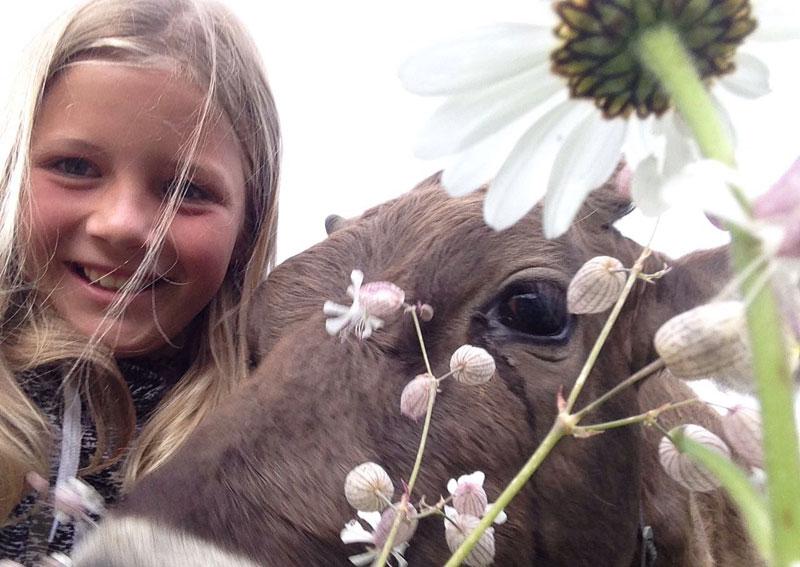 Die Kleinen haben Spaß mit den Tieren